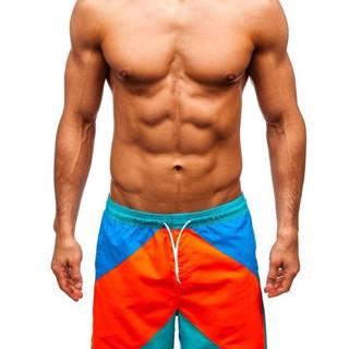 Vícebarevné pánské koupací šortky