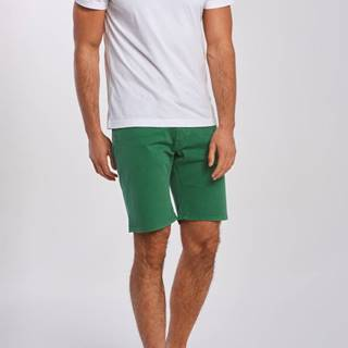 Šortky  D1. Regular Desert Shorts