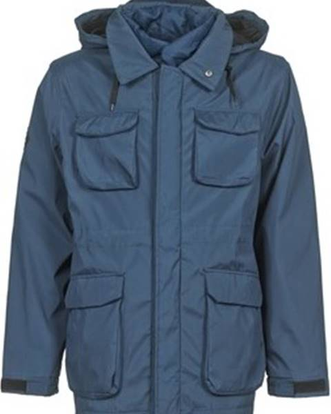 Modrá bunda Bellfield