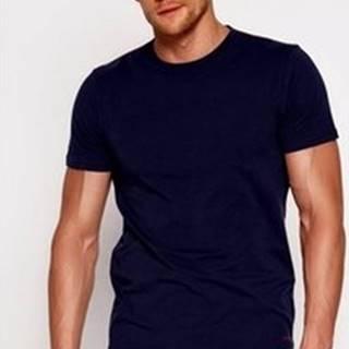 Esotiq Henderson Trička s krátkým rukávem Pánské tričko 18731 Bosco blue ruznobarevne