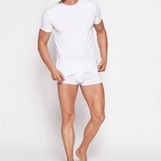 Esotiq Henderson Trička s krátkým rukávem Pánské tričko 18731 Bosco white ruznobarevne
