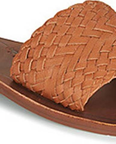 Pantofle, žabky roxy