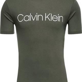Calvin Klein Jeans Trička s krátkým rukávem K10K103078 Zelená