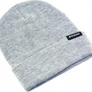 Dickies Čepice Alaska beanie hat