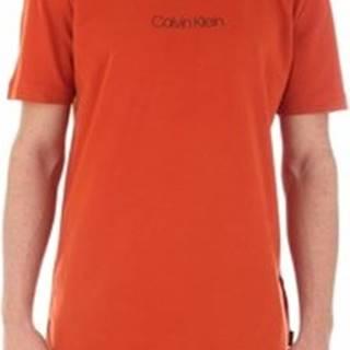 Calvin Klein Jeans Trička s krátkým rukávem K10K104934 Oranžová
