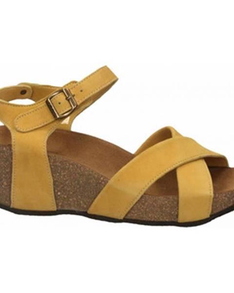 Žluté pantofle Frau