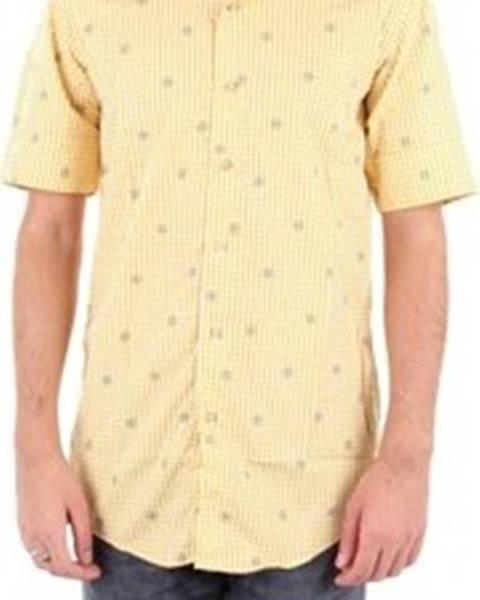 košile Paolo D'auria