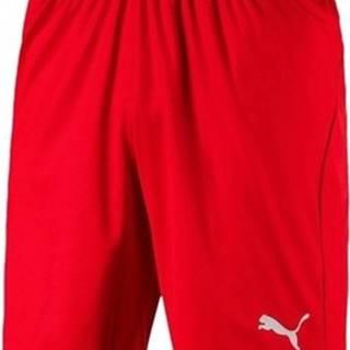 Kraťasy & Bermudy Liga Shorts Core Červená