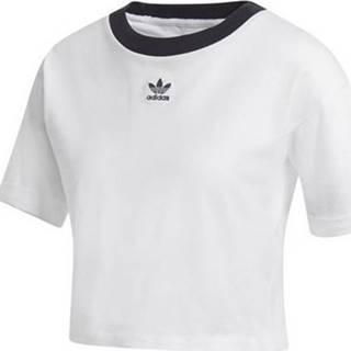 adidas Trička s krátkým rukávem Crop Top ruznobarevne