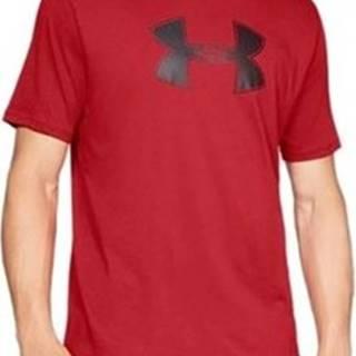 Trička s krátkým rukávem Big Logo SS Tee Červená